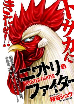 Rooster Fighter